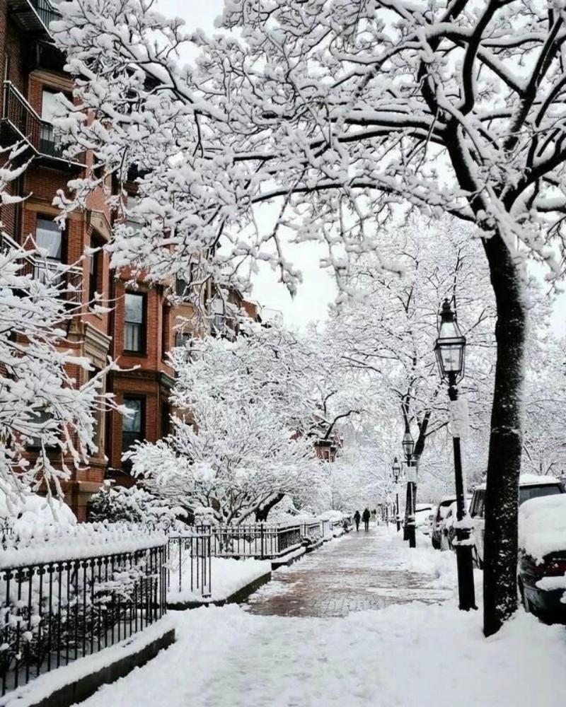 冬季已至,愿我一抹暖意温暖你的生活